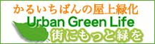 かるいちばんの屋上緑化